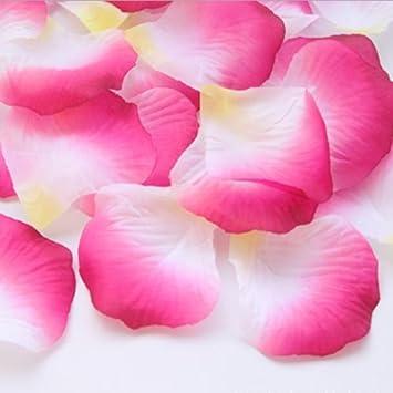 100 Stück Rosenblätter Hochzeit Deko Blumen (Weiß und Rosa rot ...