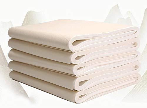 Tianjintang Chinese Sumi Ink Brush Writing Painting Calligraphy Blank Xuan Paper Rice Paper 100 Sheets 34x138cm by Tianjintang