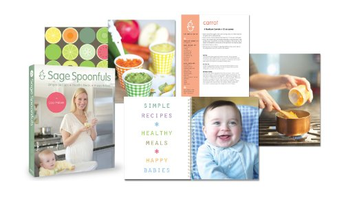 Amazon baby food maker 19 pc starter kit includes immersion amazon baby food maker 19 pc starter kit includes immersion blender food processor storage jars trays recipe book more baby food mills forumfinder Choice Image