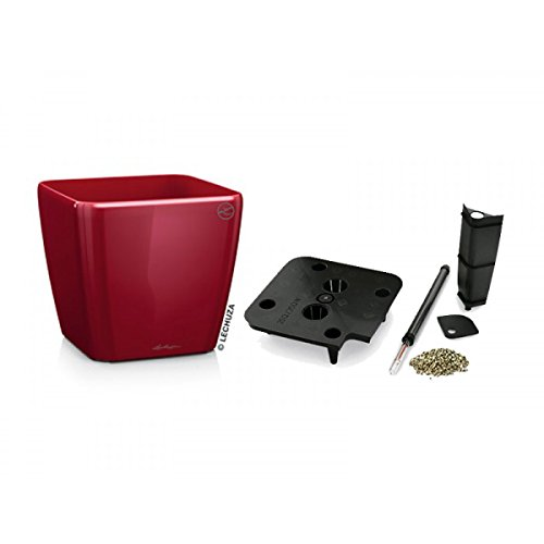 Lechuza EP-LQUA-RED-20 20 x 20 x 19 in. Quadro Premium Planter44; Scarlet Red Gloss by Lechuza