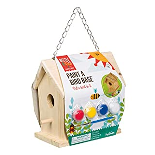 Toysmith Beetle & Bee Paint A Bird Base, Backyard Birdhouse Kit with Fsc Certified Wood - DIY Arts & Crafts Gardening for Kids & Teens, Boys & Girls