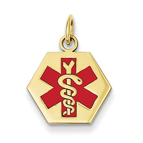 Medical Jewelry Pendentif or 14ct