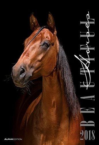 Beautiful Horses 2018 - Pferde - Bildkalender (34 x 50) - Tierkalender: by Nicole Hollenstein