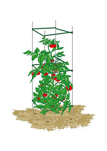 Mr.Garden,Tomato Cages,Plant Cage, Sturdy And Durable,5-Feet High,2 Pack,Square,Heavy Duty