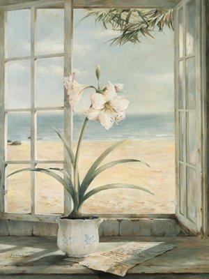 Canvas \'Ocean Amaryllis\' by Fabrice de Villeneuve - image/canvas ...