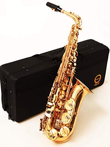 Herche Superior Alto Saxophone AS-630 - Best for Students - High F# Key - Plush lined Back Pack Case - Leather Pads - Cork Grease - Neck Strap - #2 Rico Saxophone Reeds