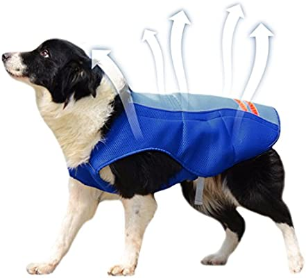 Petacc Chaleco de Refrigeración para Mascotas para Exteriores ...