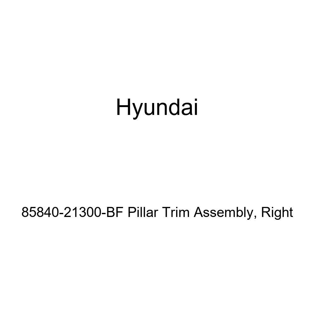 Genuine Hyundai 85840-21300-BF Pillar Trim Assembly Right