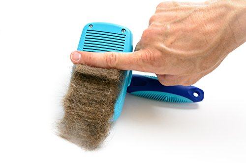 CleanHouse Dog and Cat Hair Brush, Stops Shedding, Easy Self-Cleaning Button! Pro Grooming Brush Removes all Hair, Tangles, Cleans, Desheds - Best Slicker Brush for all Pet Sizes & Hair Types by CleanHouse Pets (Image #6)