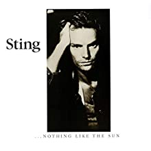 …Nothing Like The Sun (2LP Vinyl)