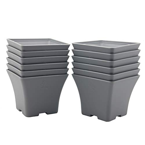 BangQiao 4.60 Inch Plastic Square Flower Plant Pots Container with Drainage Hole, Pack of 12, Gray