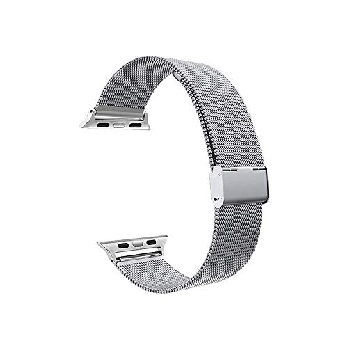 LUNANI Compatible for Apple Watch Band 42mm 44mm, Stainless Steel Mesh Sport Wristband Loop with Adjustable Magnet Clasp for iWatch Series 1 2 3 4, Silver