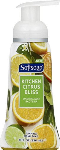 The 10 best softsoap antibacterial citrus 2020