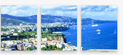 SyntacticRUs Designs Canvas Wall Art French Riviera Nice France South of France Cote D'Azur (3) Panels 16x20 Each Split Image Print Copyright