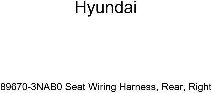 Right Rear Genuine Hyundai 89670-3NAB0 Seat Wiring Harness