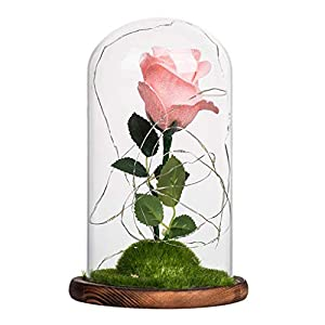 Enchanted Rose, Silk Forever Rose, Artificial Flower LED Night Light with Glass Dome on Wooden Base Valentine's Day Anniversary Birthday Gift 113