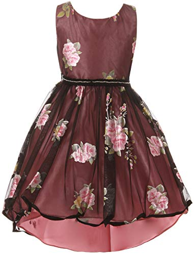 Big Girls' Rose Print Hi-Lo Christmas Flower Girl Dress Rose 14 JKS 2150