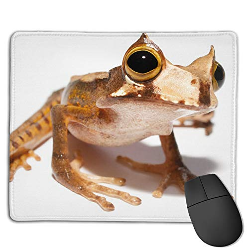 Non-Slip Mouse Pad Rubber Mousepad Horned Frog Print Gaming Mouse Pad 1822 cm ()
