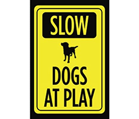Amazon.com: Dogs at Play lenta, color amarillo y negro de ...