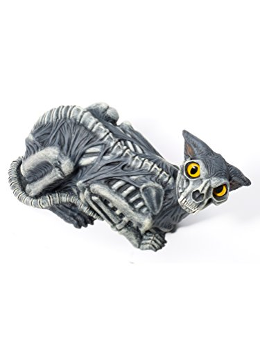 Skeleton Halloween Costumes For Dogs - Forum Novelties Zombie Cat