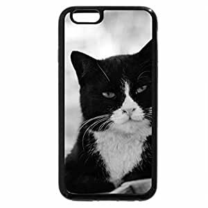 iPhone 6S Plus Case, iPhone 6 Plus Case (Black & White) - Cat