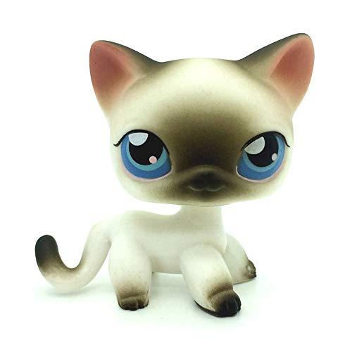 jjlin Mini Pet Shop Black White Short Hair Siamese Cat Blue Eyes LPS #5