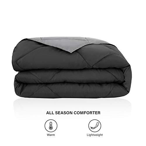 comfort Spaces Vixie reversible Comforter Sets
