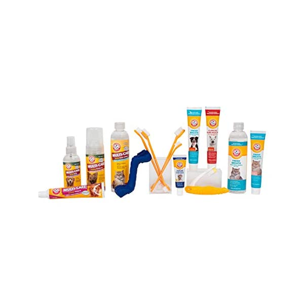 ARM & HAMMER Paste & Brush Set 7