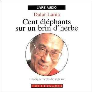 Cent éléphants sur un brin d'herbe | Livre audio