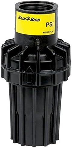 PSI-M30 Rain Bird Druckminderer 2,1 bar 3//4 IG