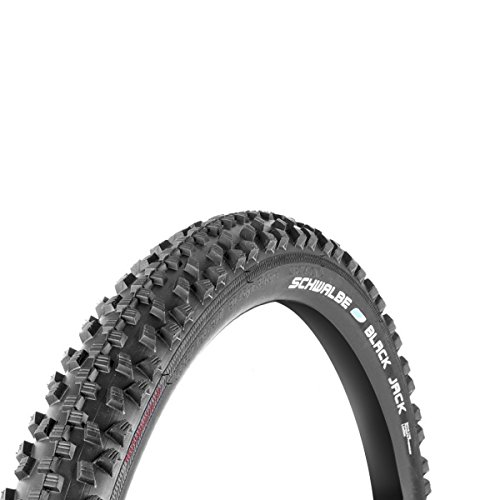 Slick Bicycle Tires (Schwalbe Black Jack Active Line Tire, 26x1.9-Inch)