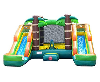c6123418db4 Amazon.com: Inflatable Bounce House and Wet / Dry Double Bay Slide ...