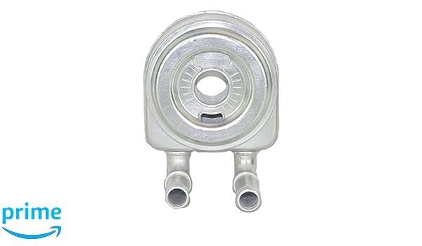 Citroen Berlingo, C15, C4, Xsara, Xsara Picasso Temperatura de aceite: Amazon.es: Coche y moto