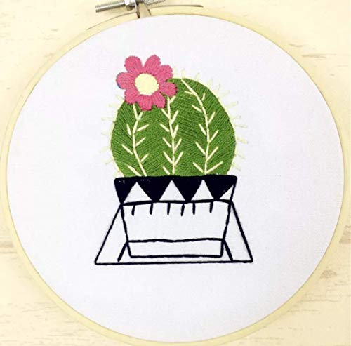 Embroidery Kit for Beginner Flower Design DIY Home Wall Decor Cactus by Ormosia