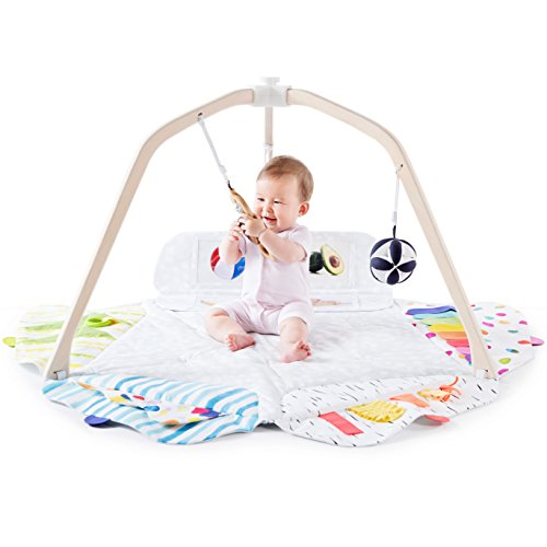 Teether Toy Developmental - The Play Gym by Lovevery; 5 Developmental Zones for Brain, Fine, Gross Motor & Sensory Development; Organic Teether, Wood Batting Ring, Mirrors; Grounded in Science - Educational Playtime w/a Purpose