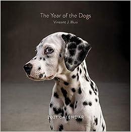 2021 Sporting Dogs Wall Calendar