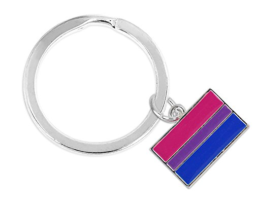 (Bisexual Pride Rectangle Key Chain (1 Key Chain - Retail))