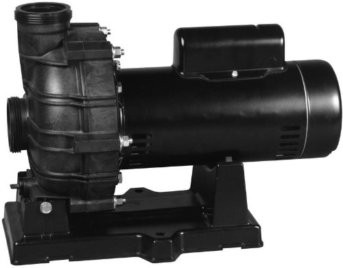 Pentair Sta-Rite TPEAG-167L Dyna-Jet TPE-Series Single Speed Energy Efficient Spa and Water Features Pump, 230-Volt, 2 HP, 230-Volt by Pentair