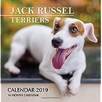 Jack Russel Terriers Calendar 2019: 16 Month Calendar