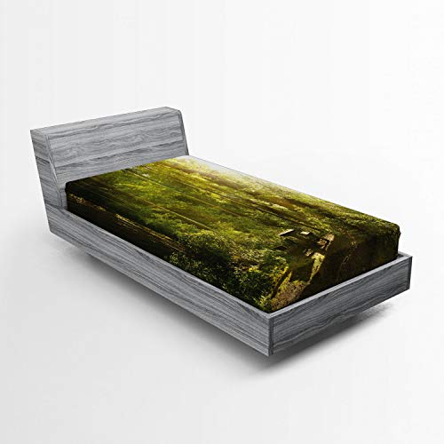 (Lunarable Nature Fitted Sheet, Sunny Rainforest with Wood Bench in Olympic National Park Washington USA Photo, Bed Cover with All-Round Elastic Deep Pocket for Comfort, Twin Size, Green Yellow )