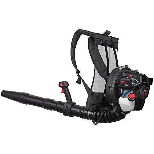 Craftsman 27cc 2-Cycle Backpack Blower