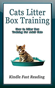 Cat Litter Box Training: How to Litter Box Training for Adult Cats