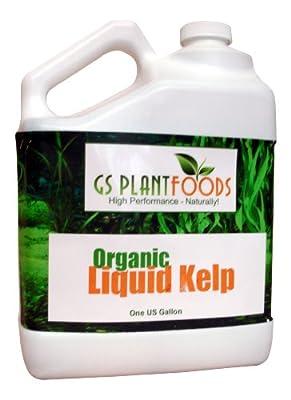 Liquid Kelp Organic Seaweed Fertilizer!