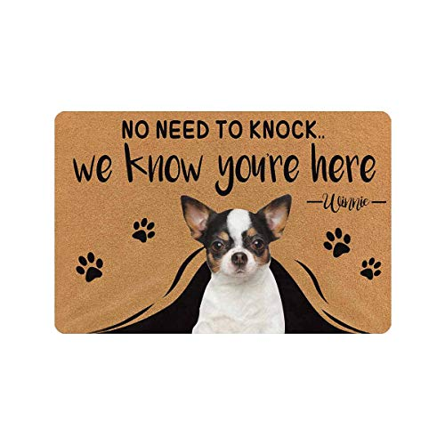 MyPupSocks Custom Personalized Text Name Pet Dog Cat Photo No Need to Knock We Know You're Here Doormat with Pet Name 23.6 x 15.7 Inches Door Floor Mat Outdoor Indoor Front Welcome Mat Kitchen Rug (Outdoor Door Front Mats Personalized)