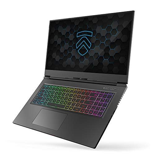 "MAX-17 Ultra Performance 17.3"" Gaming Laptop PC: Liquid Metal Intel i7-10875H 8 Core NVIDIA GeForce RTX 2070 Super 240Hz Calibrated Full HD Windows 10 Professional 1TB NVMe SSD 32GB DDR4 2933MHz RAM"