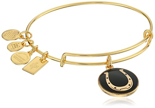 Alex Ani Horseshoe Expandable Bracelet