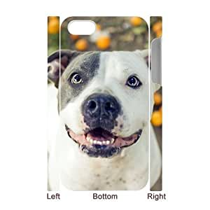 3D Bumper Plastic Case Of Pit Bull Terrier customized case For Iphone 4/4s by lolosakes