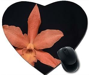 Orange Orchid Closeup Mouse Pad Desktop Mousepad Laptop Mousepads Comfortable Office Of Mouse Pad Mat Cute Gaming Mouse Pad by icecream design