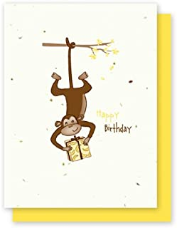 product image for Grow A Note® Birthday Monkey 4-pack