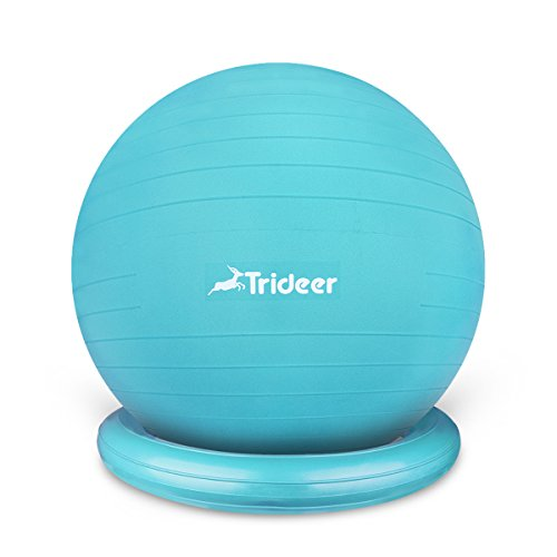 75cm Exercise Ball Chair, Stability Ball with Ring & Pump, Flexible Seating, Improves Balance, Core Strength & Posture (Office & Home & Classroom)